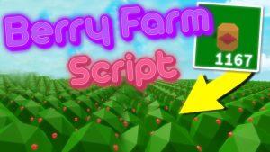 islands berry farm script
